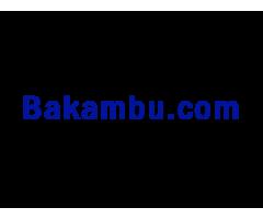 bakambu.com