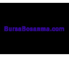 Bursabosanma.com